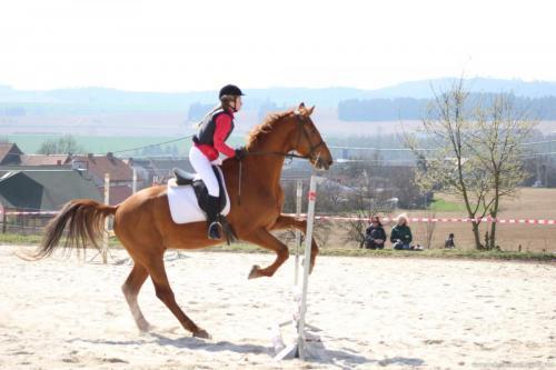 Koně Malý Pěčín